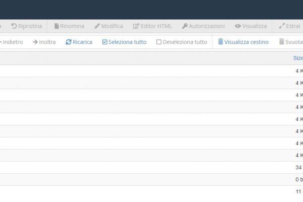 ServerPlan gestione file